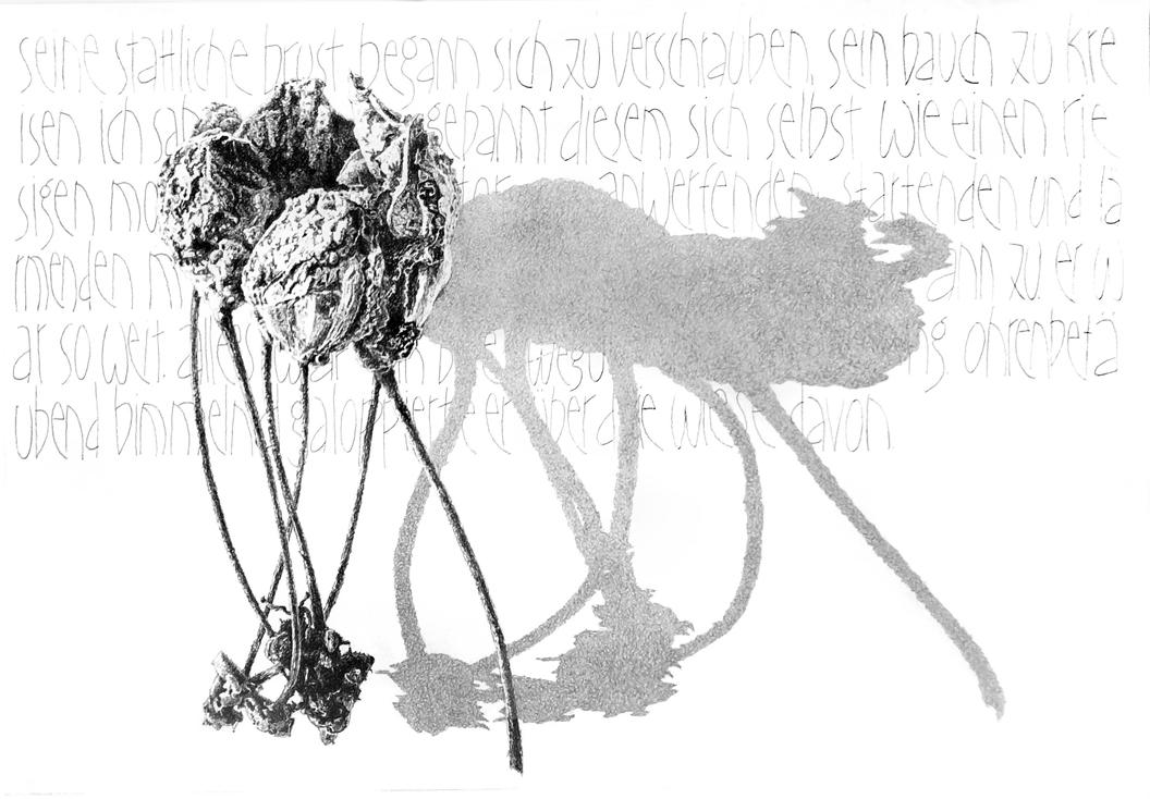 Heinz Peter Fothen: Vergessene Ernte, Zeichnung im Rahmen, 70 x 100 cm