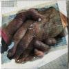 Marion Musch: Händehalten, Mischtechnik, 20 x 20 x 2,5 cm